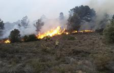 Los primeros fuegos del año calcinan más de 6 ha en el Segrià y la Segarra