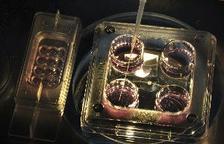 Expertos británicos desarrollan óvulos humanos en laboratorio por primera vez