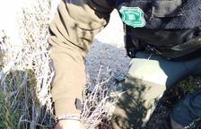 Denunciados dos cazadores en un control de los Rurales en Els Torms