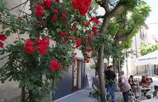 Veintiún municipios participan en el concurso para embellecer Les Garrigues