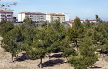 Cervera estrena el parque urbano junto a la escuela Les Savines