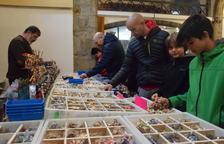 Més de 2.000 persones a la Fira del Playmobil de la Seu d'Urgell