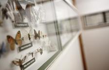 Sort obrirà a actes culturals el Museu de les Papallones