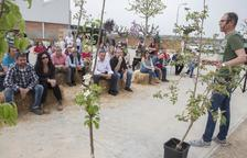 Éxito rotundo de la nueva feria de horticultura de Castellserà