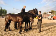 """Mollerussa estrena el concurso de caballos, """"referencia"""" en el sector"""