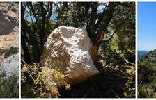 Un alud de rocas corta un camino del Montsec
