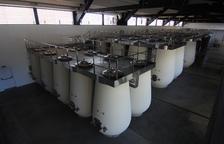 La família Torres posa en producció el celler de Juneda amb una inversió de 3,8 milions