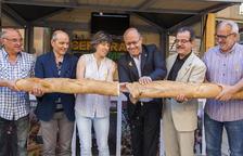 Cervera abre su Fira del Pa con más de cien variedades de varios países