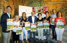 La nova i curiosa campanya de la fruita per als turistes a Aitona
