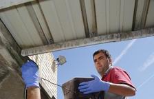 'Guerra' contra los mosquitos con 20 trampas y controles en 2.000 sumideros de la ciudad