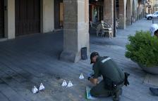 Destruyen nidos de golondrinas en Balaguer y Les Borges Blanques