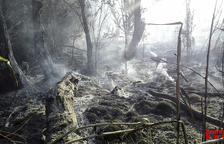 Arrasades nou hectàrees en dos incendis a la Segarra i a Aitona