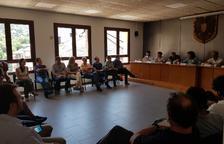Jordán llevará|traerá al Ejecutivo la polémica del oso en el Pirineo