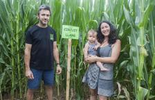 Jocs i diversió entre blat de moro a Castellserà