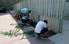 Los voluntarios del proyecto 'Jova' empiezan a trabajar