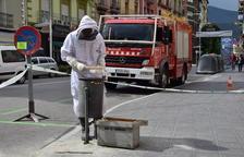 Retiran abejas de la capital del Alt Urgell