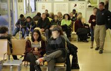 Los tratamientos contra la rabia en Lleida se doblan en solo un año