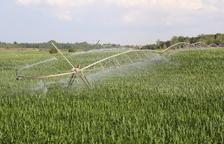 La campaña de riego supera agosto con las mayores reservas en los pantanos en 20 años