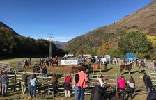 Un centenar de caballos de la Val d'Aran en el concurso de Salardú