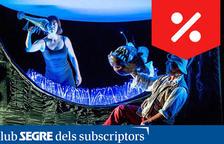 'Noctiluca' - CaixaForum Lleida