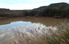 Castelldans veta el consum d'aigua de l'aixeta per tèrbola