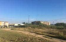 Fraga dóna a 6 hortolans un mes per deixar el solar de la futura residència