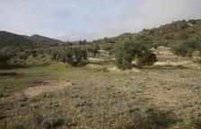 Reactiven la construcció d'un abocador a menys de 7 quilòmetres de pobles del Segrià
