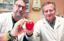 El Centre Sanitari estrena nuevo dispositivo para Cardiología