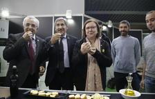 La DO Garrigues prevé un aceite de excelente calidad pese a reducir producción por la lluvia