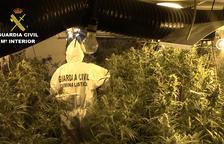 Sis detinguts a Ponent per una partida de 13 quilos de cocaïna i 4 d'heroïna