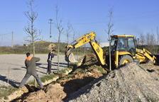 Planten arbres a la futura zona d'autocaravanes