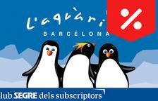 L'elegància del pingüí - L'Aquàrium de Barcelona